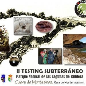 II Testing Subterráneo Biodiversidad Virtual Manchego