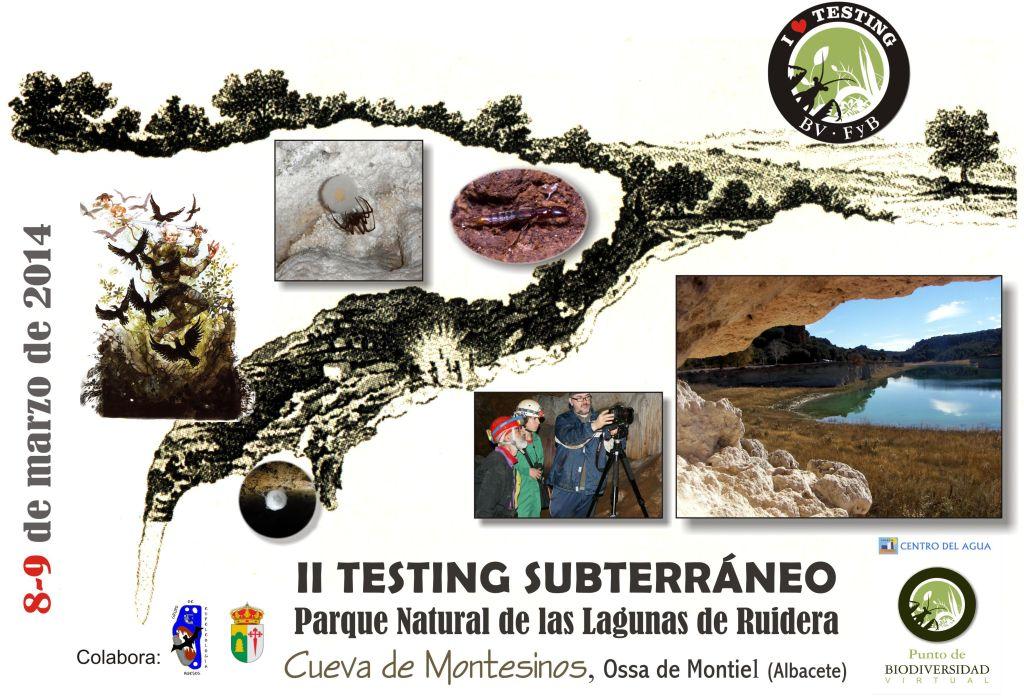 Cartel II TESTING subterraneo 2014