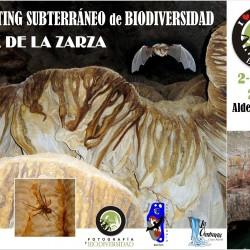IV Testing Subterráneo Biodiversidad Virtual